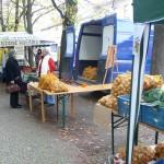 Poslední farmářské trhy 2011